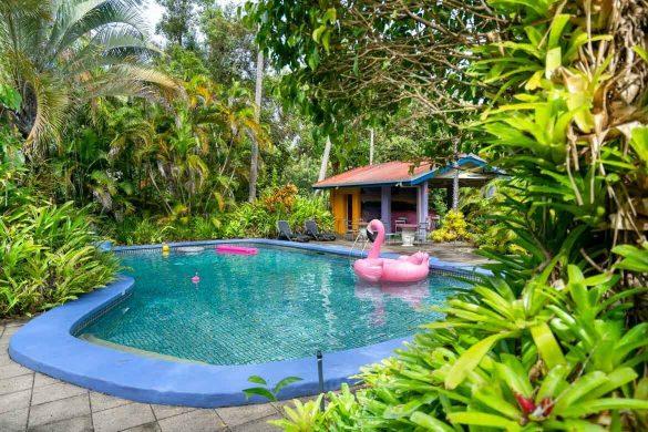Pink-Flamingo-Resort